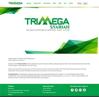 jasa pembuatan website company profile Consultant